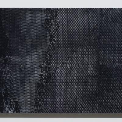 """Agnieszka Kurant, """"Ewolucje"""", 2014, druk lentykularny, dzięki uprzejmości Tanya Bonakdar Gallery, New York / Los Angeles: Na obrazie dominuje kolor czarny; znajdują się na nim delikatne, szare i białe przejaśnienia. Struktura pracy przypomina piksele."""