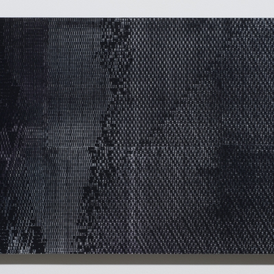 """Agnieszka Kurant, """"Evolutions"""", 2014, lenticular print, courtesy of Tanya Bonakdar Gallery, New York / Los Angeles: The reproduction is mostly black; there are delicate, gray and white shades on it. The structure of the work resembles pixels."""