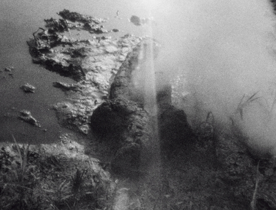 Ana Mendieta, Birth (Gunpowder Works), 1981, Super-8mm film transferred to high-definition digital media, 2\\\'59\\\'\\\' © The Estate of Ana Mendieta Collection, LLC Galerie Lelong & Co., New York