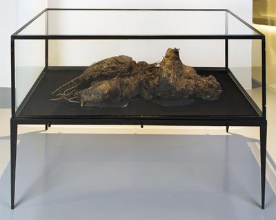 Władysław Hasior, Niobe from Black Fire, 1961-1974, wax, soap, textile, metal, velvet, Muzeum Sztuki w Łodzi