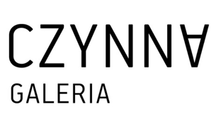 The picture shows the logotype of Open Gallery. At the top, there is the word